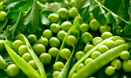 Giá trị dinh dưỡng các thực phẩm họ đậu với sinh lý nam giới