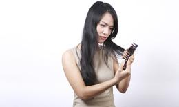 8 món ăn ngăn ngừa rụng tóc