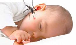 Dấu hiệu nhận biết sớm sốt xuất huyết