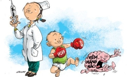 Chớm hè, cần đề phòng bệnh viêm não Nhật Bản