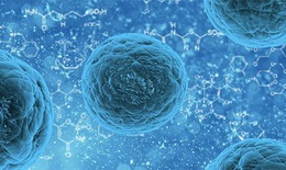 Thành tựu của tế bào gốc trong điều trị bệnh