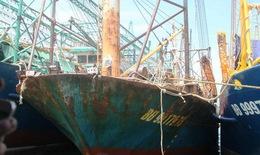 Tàu vỏ sắt của ngư dân bị hư hỏng: Xử lý nghiêm tổ chức, cá nhân sai phạm