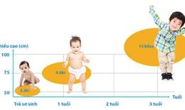 2 giai đoạn vàng phát triển chiều cao của trẻ