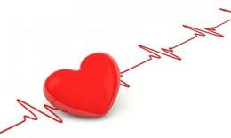 Trái tim: Từ tình yêu đến sự hồi sinh