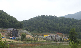 Xử lý, khắc phục sau thanh tra việc quản lý, sử dụng đất rừng Sóc Sơn, Hà Nội