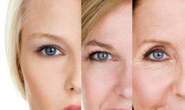 Các biểu hiện của lão hóa da