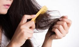 Đối phó chứng rụng tóc