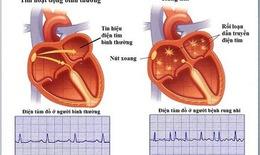 Nhiều đột phá trong ứng dụng điều trị các bệnh tim mạch
