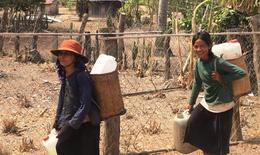 """Ninh Thuận: """"Cõng"""" nước mong nhanh qua hạn"""