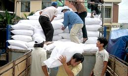 Hỗ trợ gạo cho người dân sau bão số 10