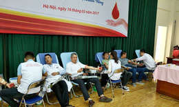 Thầy thuốc trẻ Việt Nam hiến máu vì người bệnh