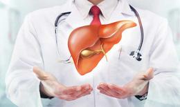 20 - 30% dân số Việt Nam mắc bệnh gan nhiễm mỡ