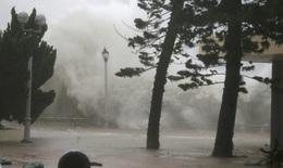 Bão Mangkhut vào Hồng Kông, Trung Quốc quật đổ cây, thổi bay người