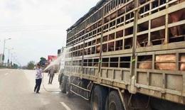 Hà Nội phòng chống bệnh dịch tả lợn châu Phi: sẽ xử lý cán bộ lơ là để dịch lây lan diện rộng