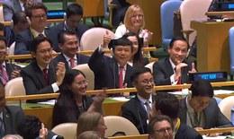 Việt Nam trúng cử Ủy viên không thường trực HĐBA LHQ nhiệm kỳ 2020-2021