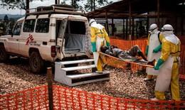 WHO ban bố tình trạng khẩn cấp toàn cầu về y tế đối với dịch Ebola