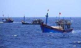 Hội Nghề cá Việt Nam phản đối Trung Quốc ban hành quy chế cấm đánh bắt cá trên Biển Đông