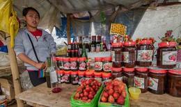 ILO: Đại dịch COVID-19 ảnh hưởng nặng nề tới lực lượng lao động trẻ