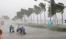 Ứng phó bão số 1, đề phòng gió mạnh và mưa lớn