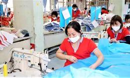 Hỗ trợ người lao động và người sử dụng lao động gặp khó khăn do đại dịch COVID-19 khẩn trương nhất