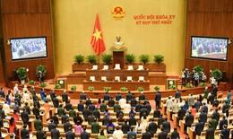 Ngày làm việc thứ 2, Quốc hội bầu Tổng Thư ký và các Chủ nhiệm Ủy ban của Quốc hội