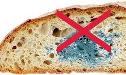 Mùa nóng  đề phòng ngộ độc do thực phẩm hư hỏng, biến chất