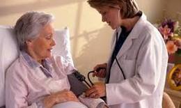 Dược thiện cho người tăng huyết áp