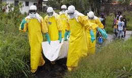 WHO gửi vắc-xin thử nghiệm tới ổ dịch Ebola tái bùng phát tại Congo