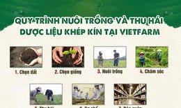 Dược liệu Vietfarm: Đơn vị cung ứng dược liệu chất lượng