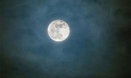Nhà khoa học Nga đề xuất chinh phục Mặt trăng với robot avatar