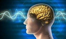 Gia vị thảo mộc tăng cường trí não