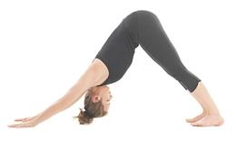 Tư thế yoga cho dân văn phòng (P1)
