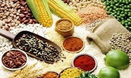Chất béo thực vật giúp giảm bệnh viêm ruột