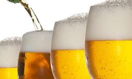 Hợp chất trong bia giúp trị hội chứng chuyển hóa