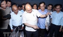 Tạo sinh kế lâu dài cho người dân bị ảnh hưởng sự cố môi trường biển