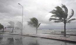 Y tế các địa phương chủ động ứng phó bão số 4
