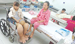 Việt Nam đã loại trừ bệnh giun chỉ bạch huyết