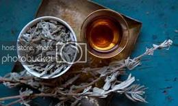 Ngọc bình phong ẩm - Trà dược trị ho, cảm mạo