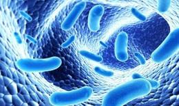 Dùng men tiêu hóa, men vi sinh trong trường hợp nào?