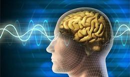 Xử trí rối loạn stress sau sang chấn