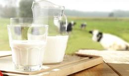 Trẻ bị dị ứng sữa bò, nỗi lo của mẹ