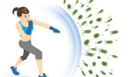 Những cách tăng cường hệ miễn dịch cho cơ thể