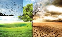 Biến đổi khí hậu có thể thúc đẩy sự xuất hiện của SARS-CoV-2
