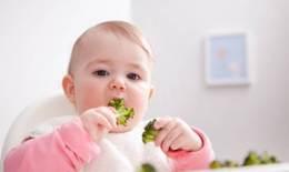 Ăn dặm quá sớm, trẻ dễ mắc bệnh tiêu hóa
