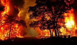 Nắng nóng nguy cơ hoả hoạn, cháy rừng, Bộ Công an chỉ đạo khẩn về phòng cháy
