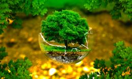 Ứng dụng công nghệ 4.0 để cảnh báo chất lượng môi trường