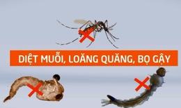 Hơn 70.000 ca mắc sốt xuất huyết, cần tích cực diệt bọ gậy và muỗi truyền bệnh
