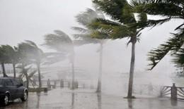 Bão số 2 hướng vào đất liền, Chính phủ ra Công điện khẩn để hạn chế thiệt hại