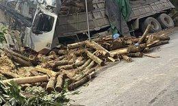 Xe đi thu hoạch cây tràm gặp tai nạn thảm khốc 7 người chết