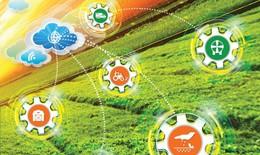 Sản xuất và sử dụng thực phẩm sạch là trách nhiệm và quyền của mỗi người